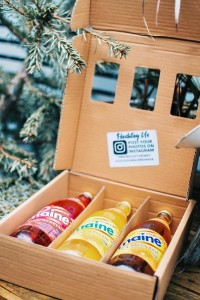 The Gift Box from Maine Soft Drinks